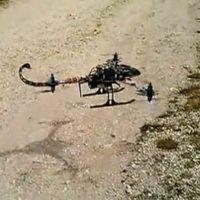 Lo scorpione volante di Pier Lorenzo Pessah
