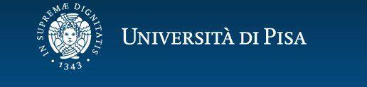 universita-pisa-logo