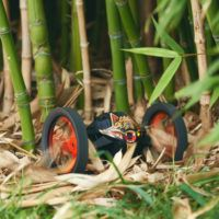 Parrot_Jumping_Sumo_LIFESTYLE_BAMBOO