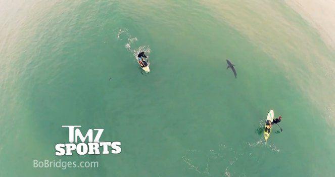 canoisti-e-squalo-ripresi-da-drone