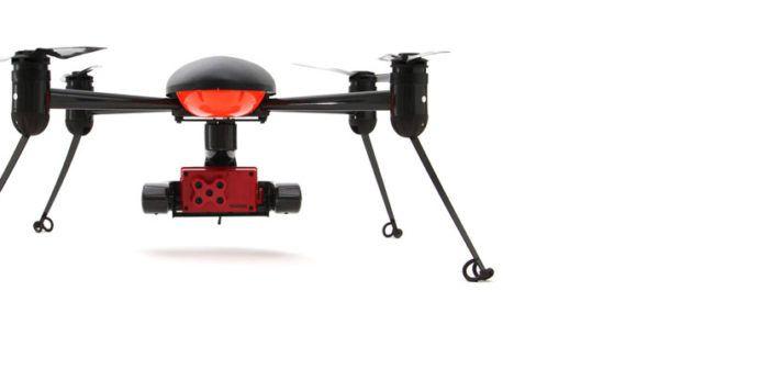 drone per rilevo stato vigore piante