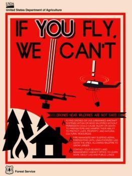 locandina divulgativa corpo forestale usa no droni su incendi