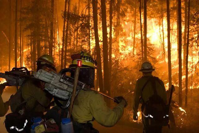 vigili fuoco in mezzo alle fiamme