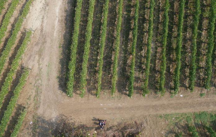 volo-droni-fiap-agricoltura