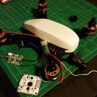 Il drone corsaiolo di Matteo Malpezzi