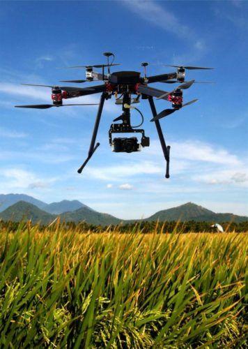droni per l'agricoltura lotta xylella