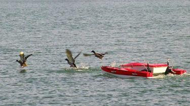 drone acquatico S.Wa.P. (Shallow Water Prospector)