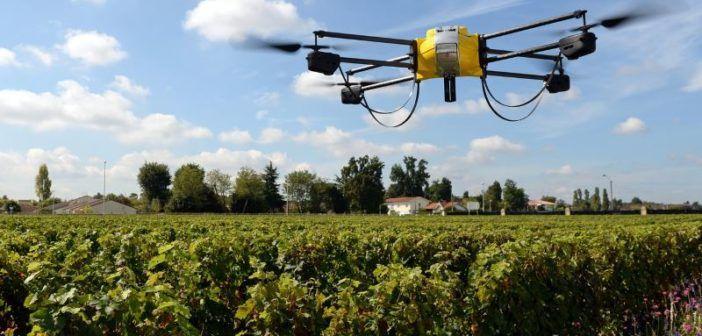 Droni per l'agricoltura, il settore supererà 2 miliardi di dollari nel 2021