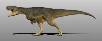 megalosaurus_by_manuelsaurus-d9nw70a