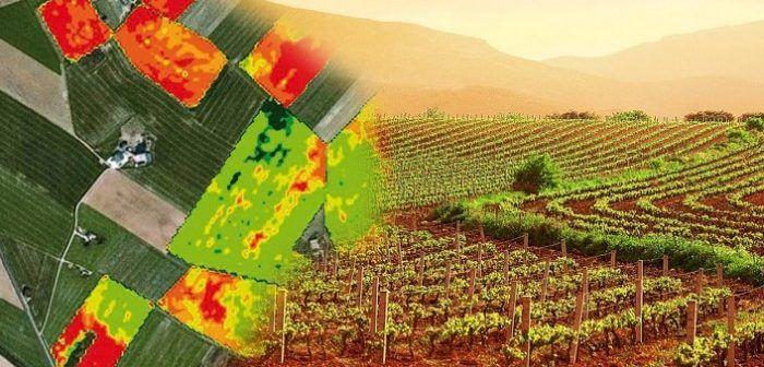 agricoltura-di-precisione-foto-aeree