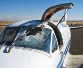 Uccello o drone, quale collisione risulta essere più pericolosa per un aeromobile?