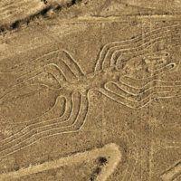 drone scopre nuove linee deserto di nazca