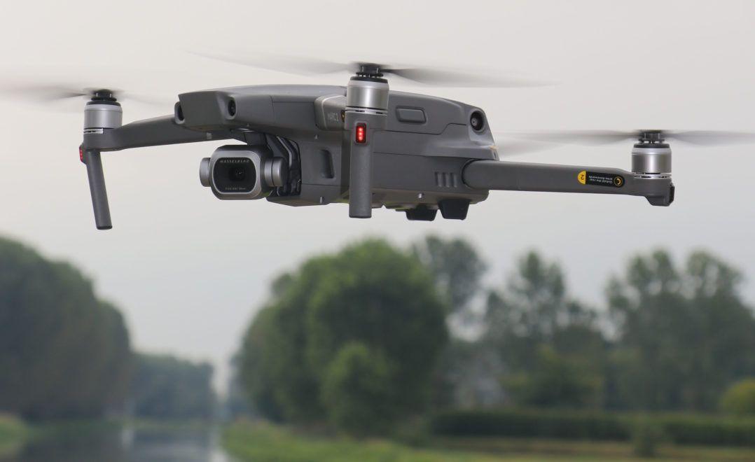 drone parrot swing