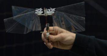 delfly drone