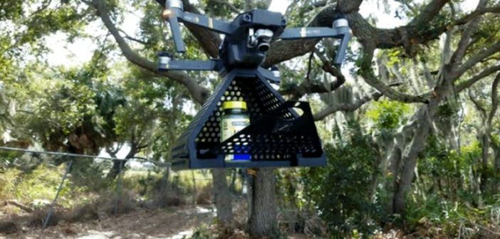 zing drone delivery dji