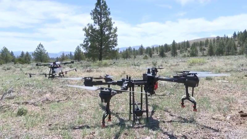 USA: droni per combattere le erbe infestanti in Montana